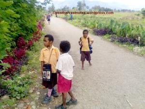 Generasi muda pelajar dan pramuka. Tetap semangat menuntut ilmu di tempat terpencil walau harus menempuh perjalanan yang cukup jauh untuk ke sekolah.
